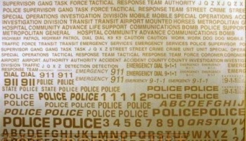 Generic Police & Special Units Decals: Tactical Response, Bomb Squad & 911 (Gold) - Chimneyville