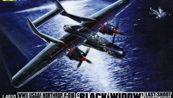 WWII USAAF Northrop P-61B 'Black Widow' Last Shoot Down 1945 1/48 - G.W.H.
