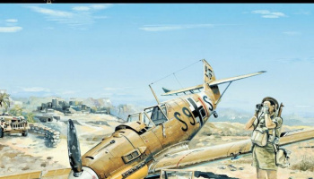 Messerschmitt Bf 109E-7 Trop - Limited Edition 1/32 - HGW Models