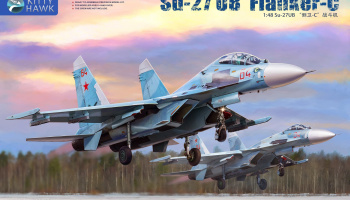Su-27UB Flanker-C 1:48 - Kitty Hawk