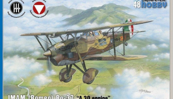 1/48 IMAM (Romeo) Ro.37 A30 engine