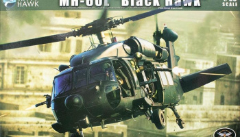 1/35 MH-60L Black Hawk