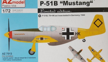 1/72 P-51B Mustang Captured
