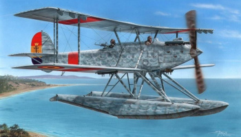 1/72 Vickers/CASA type 245 Spanish Versi.