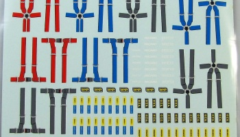 Seat Belts - COLORADODECAL