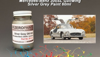 Mercedes-Benz 300SL Silver - Zero Paints
